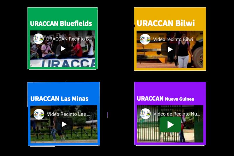 preview de videos